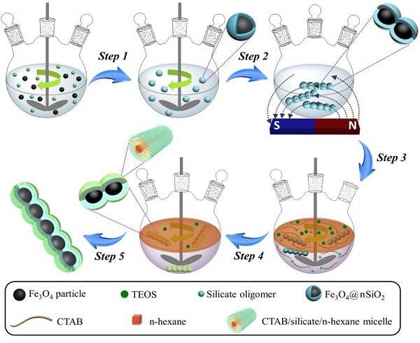 磁场诱导界面共组装策略合成磁性介孔二氧化硅纳米链