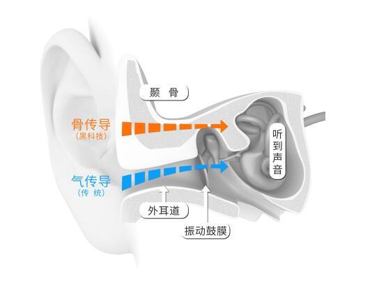 减肥助推器:也许就是骨传导耳机