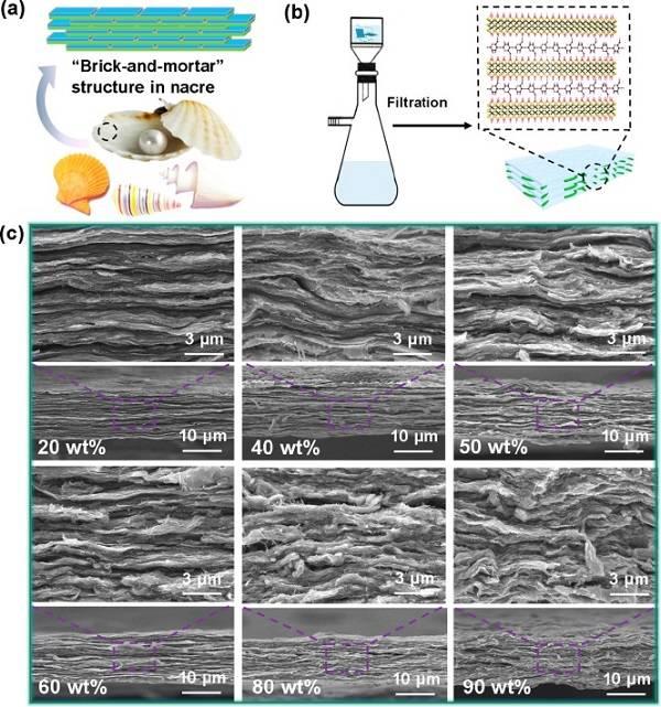 电磁辐射屏蔽新材料:高韧MXene/纳米纤维素复合电磁屏蔽纸