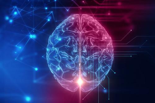 发展了这么久,AI芯片竟只与老鼠大脑差不多?