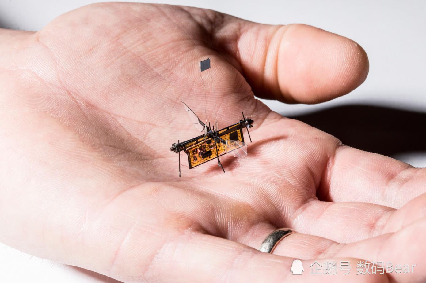 """智能硬件:'靠激光提供动力就能飞行的""""机器苍蝇""""你见过吗?'"""