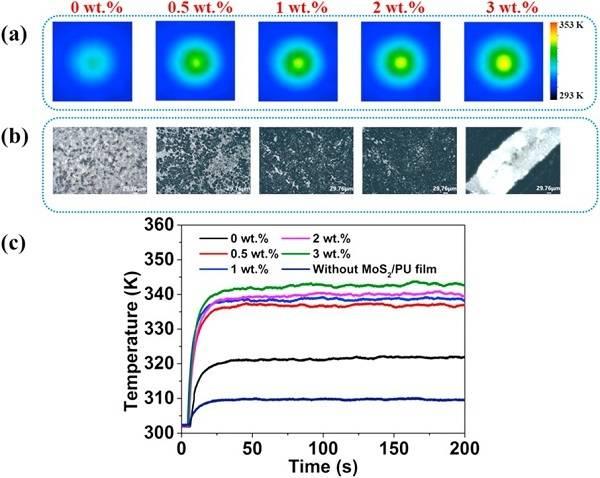 MoS2是比氧化石墨烯和金纳米棒具有更高吸光度的光热材料