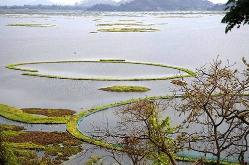 印度森林与环境部:禁止在洛克塔克湖使用LED灯捕鱼