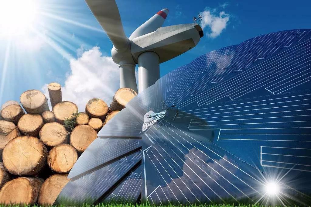 领头羊!中国对全球能源发展贡献率超过35%