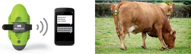 """智慧农业MEMS技术真是农场主的""""神算子""""吗?"""