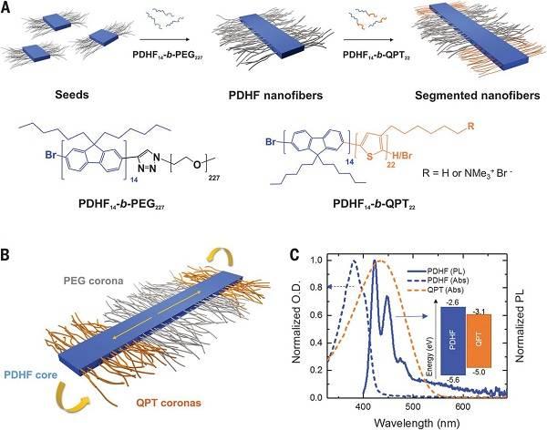 突破激子扩散长度-200nmPDHF纤维