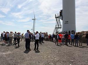 Luxcara在挪威开设111.2MW风电场