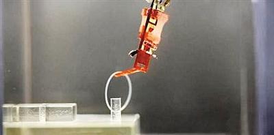 人机融合新突破 日本用活体肌肉构建机械指-玩意儿