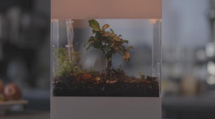 """谷歌打造AI玻璃容器,可以""""展示""""天气状况"""
