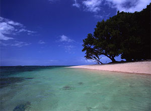 世界银行支持马绍尔群岛3MW光伏项目
