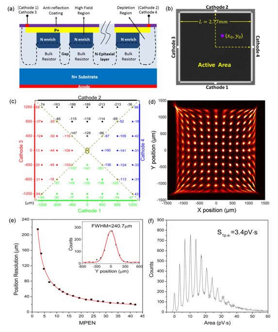 位置灵敏硅光电倍增器的研究取得重要进展