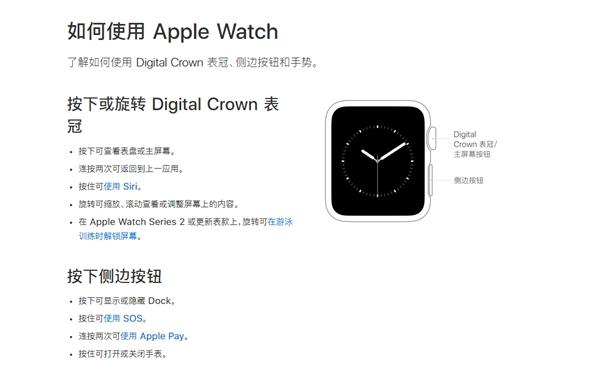 可能秋季发布 新一代Apple Watch曝光:侧键不可按压了