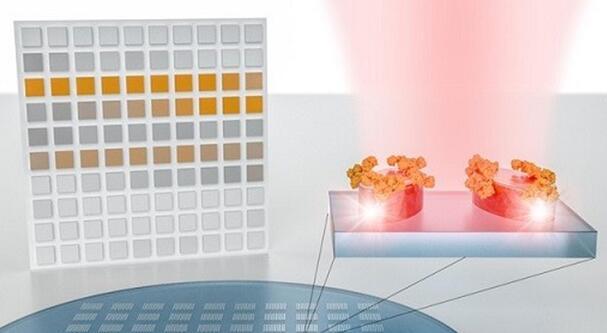 新型分子识别传感器系统诞生 破解红外光谱仪分析难题