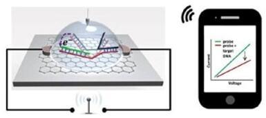 新型DNA生物传感器芯片实时检测单核苷酸多态性