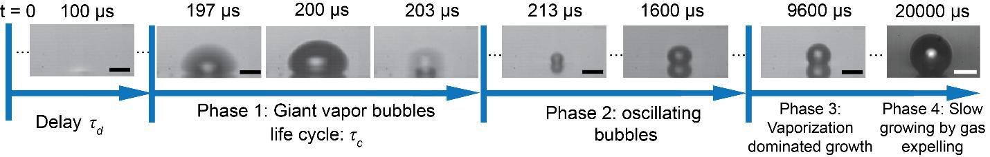 激光等离子体气泡机理研究获进展