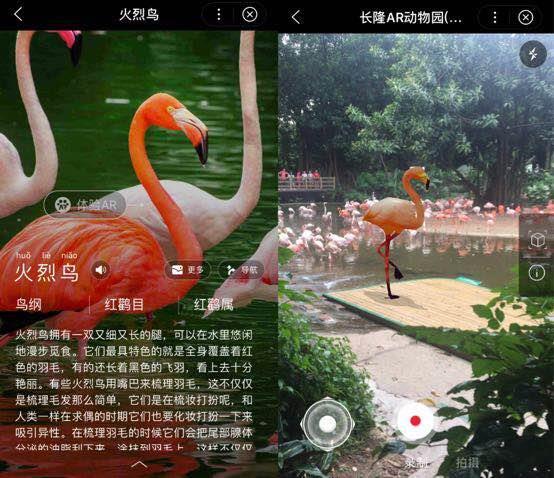 百度上线动物园智能小程序:支持AR相机