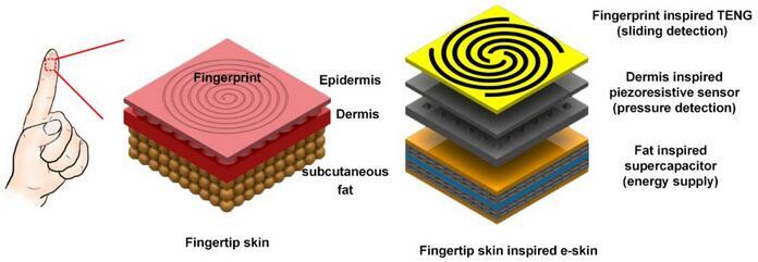 北京大学在多功能电子皮肤研究中取得重要进展