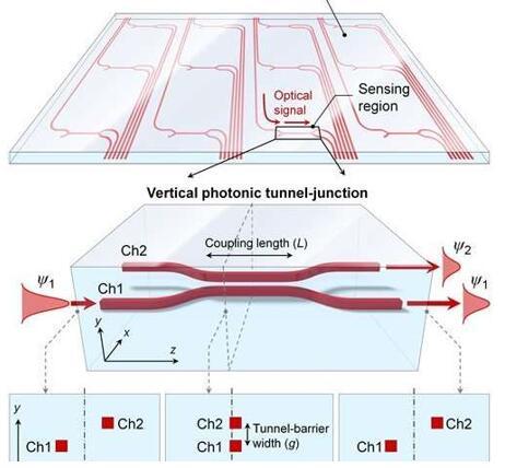 新型光学压力传感器赋予人造皮肤更好的触摸感