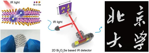 北京大学在二维Bi2O2Se超快高敏红外芯片材料上获重要进展