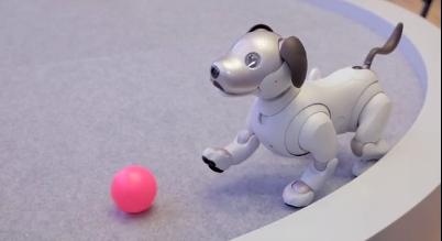 索尼公司新品机器狗Aibo:独特智能,可与人互动