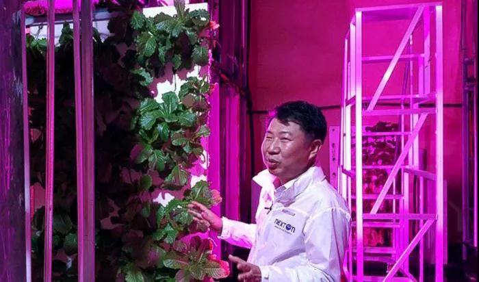 韩国建全球首个隧道LED照明垂直农场