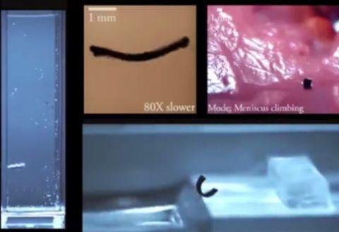 德国科学家研发软体机器人,通过磁场就可控制其行动