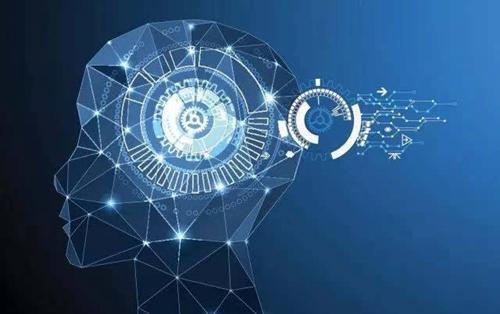 新开发的人工智能技术可助研究者更准确辨识细胞结构
