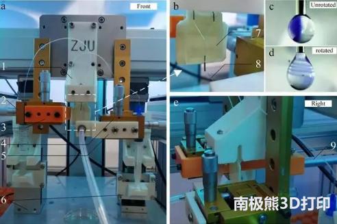 """浙江大学研发""""黑科技"""" 让3D打印迷你器官不再是梦"""