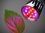 2018年十佳LED生长灯简析
