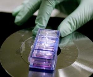 新型基因疗法可对艾滋病病毒有免疫力