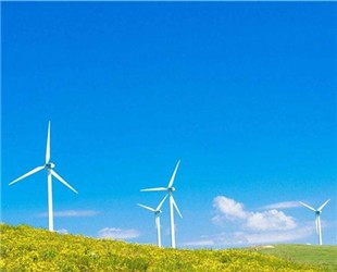 秦海岩:莫让并网标准杀死新能源产业