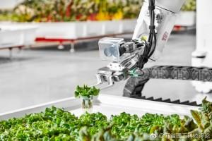 让机器人种植蔬菜 Iron Ox公司在加州开设了第一家无人农场