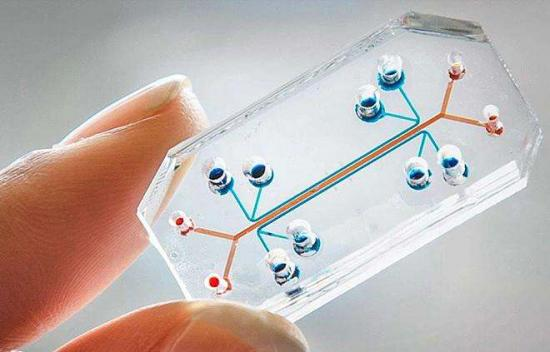 """成长中的技术:如何用""""芯片""""打开精准医疗的想象空间?"""