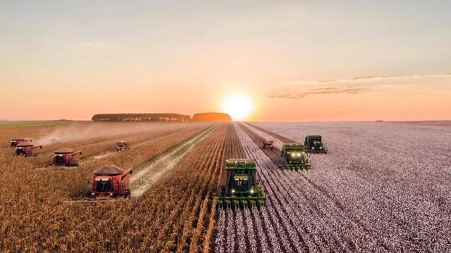 智慧农业兴起,阿里、京东、百度积极入局,谁能抢先占领风口?