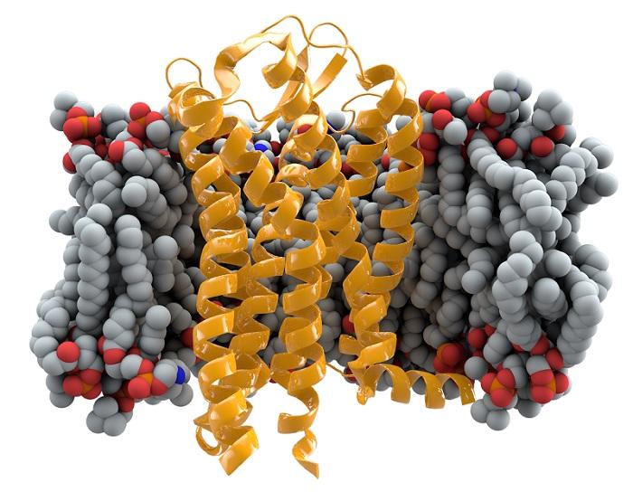 第一批用基因编辑工具定制DNA的婴儿即将诞生?