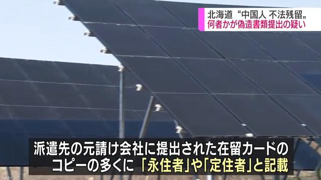 """46名中国光伏工人在日本失踪:又是""""531""""的锅?"""