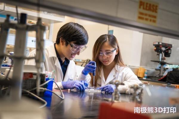 加州大学用天然材料3D生物打印离体组织筛选药物