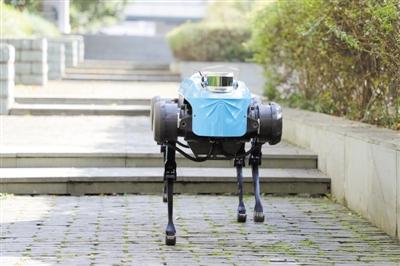 四足机器人学会上下台阶了