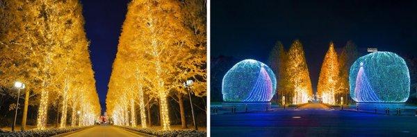 罗姆:独特LED技术打造京都最大规模灯光盛宴