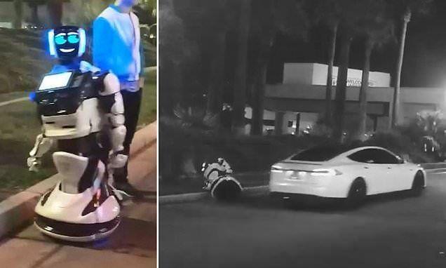 CES2019   AI与机器人的精彩碰撞