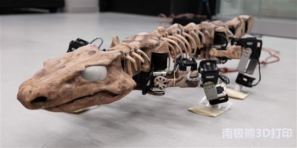 3D打印机器人重现了2.9亿年前动物的步态