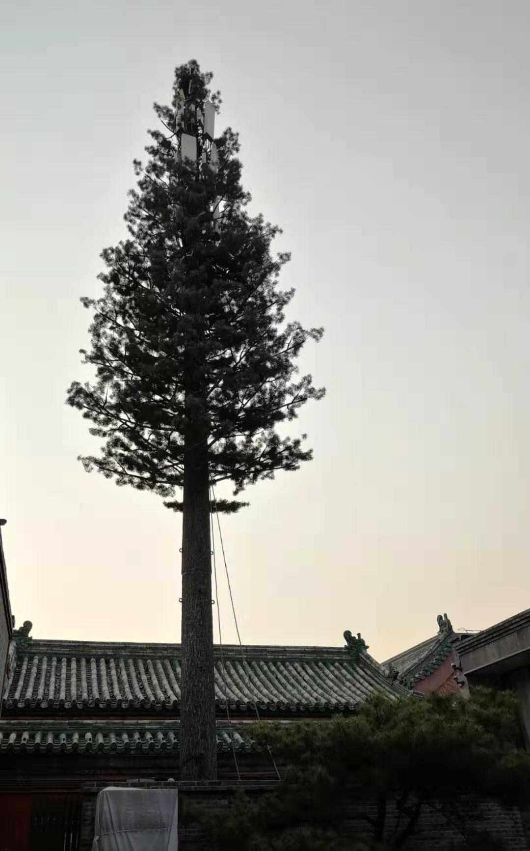 用5G为故宫插上想象的翅膀,传承中华民族的伟大成就