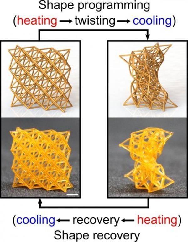 4D打印的智能超材料可以像木头一样坚硬或像海绵一样柔软