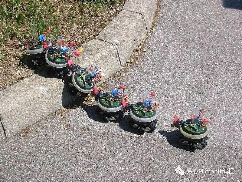 是一群蚂蚁吗?不,是群体机器人
