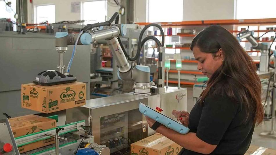 优傲机器人为新加坡包装供应商设计码垛解决方案