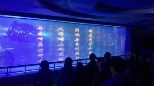 宏碁LU-P500F激光工程投影机强势上市,惊艳纱幕投影演绎海底世界