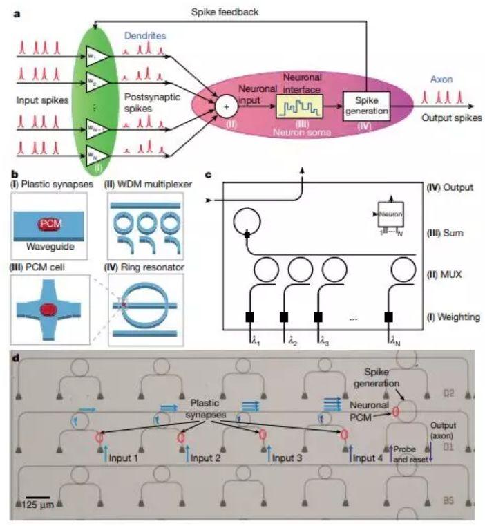 光神经网络,正在照亮智能计算的未来