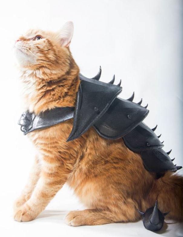 创意师利用3D打印技术 为猫咪制作盔甲