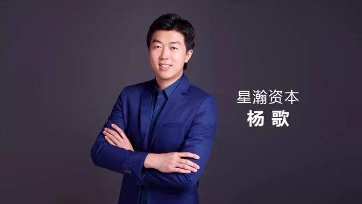 星瀚资本杨歌:看了200/300家AI芯片公司却难有一家能出手投资