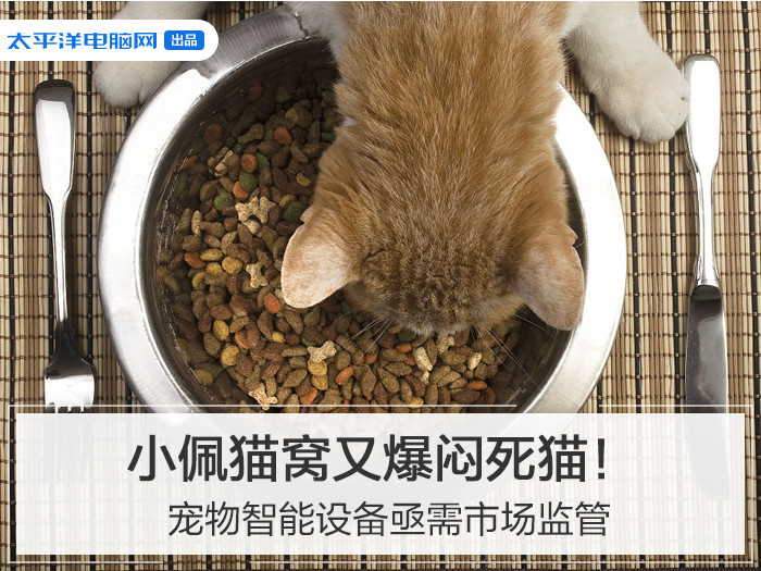 小佩猫窝又爆闷死猫!宠物智能设备急需市场监管